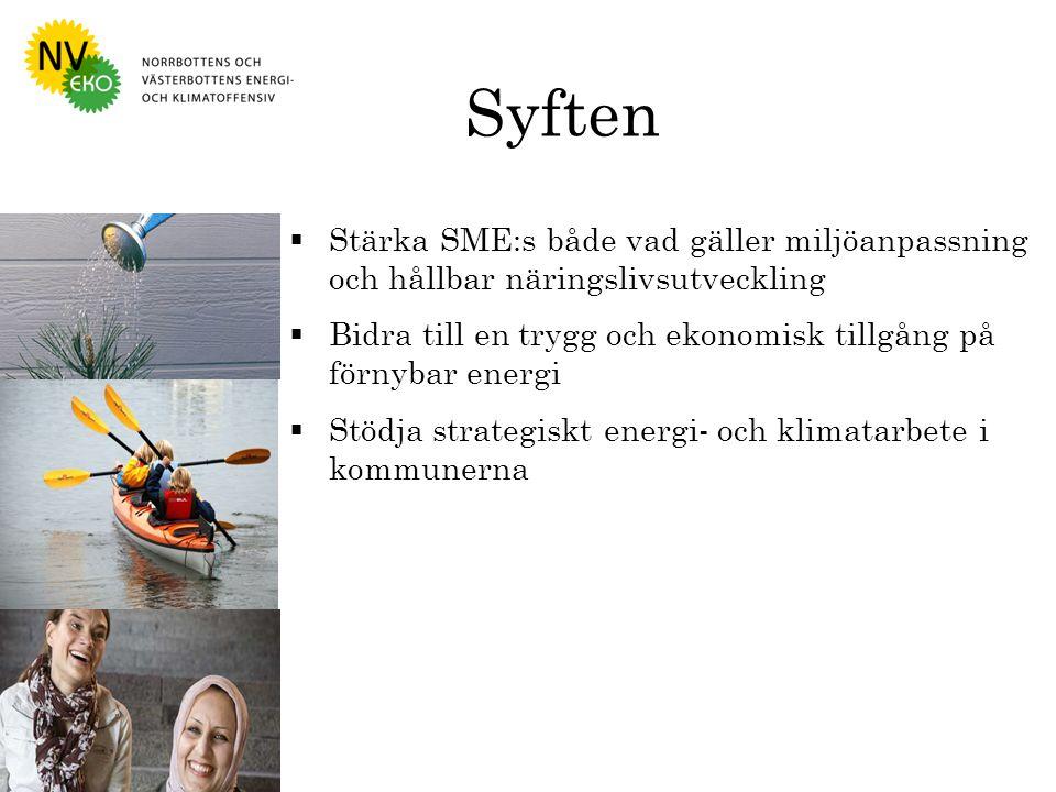 Syften  Stärka SME:s både vad gäller miljöanpassning och hållbar näringslivsutveckling  Bidra till en trygg och ekonomisk tillgång på förnybar energi  Stödja strategiskt energi- och klimatarbete i kommunerna