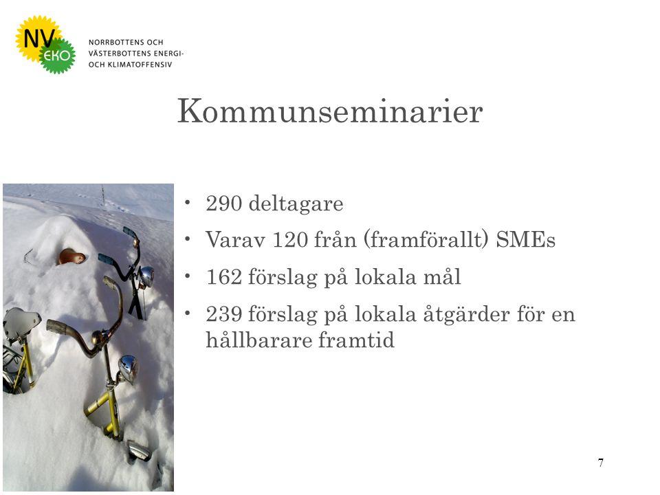 7 290 deltagare Varav 120 från (framförallt) SMEs 162 förslag på lokala mål 239 förslag på lokala åtgärder för en hållbarare framtid Kommunseminarier