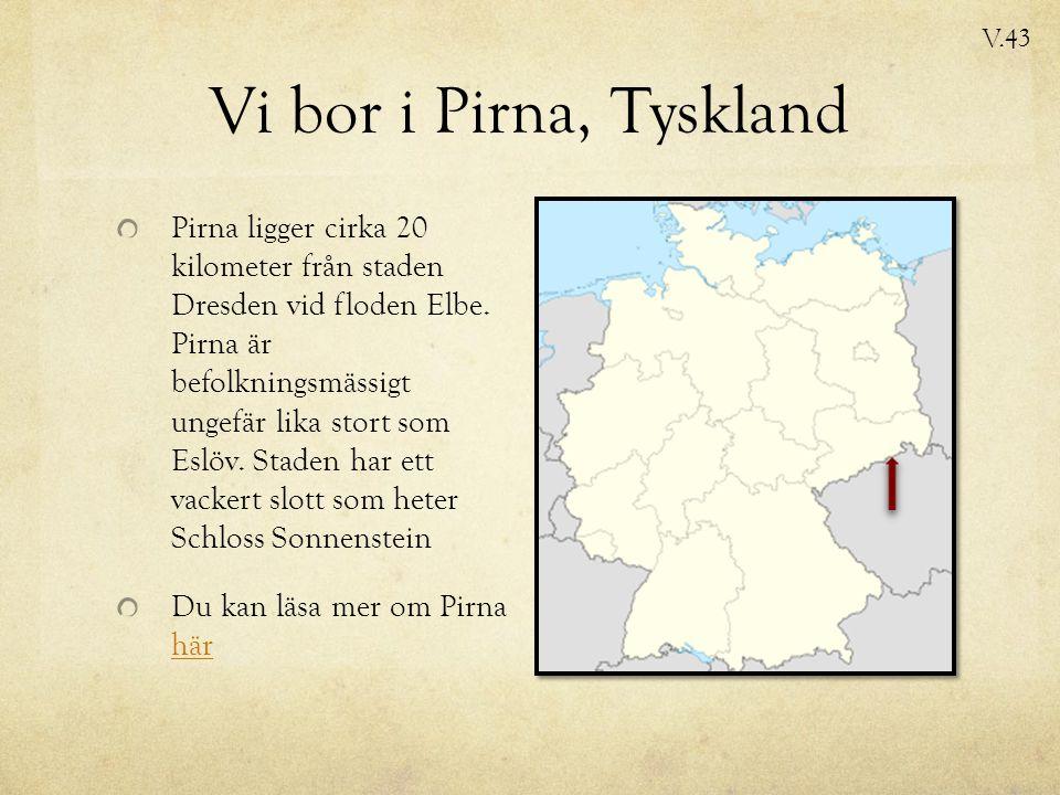 Vi bor i Pirna, Tyskland Pirna ligger cirka 20 kilometer från staden Dresden vid floden Elbe.