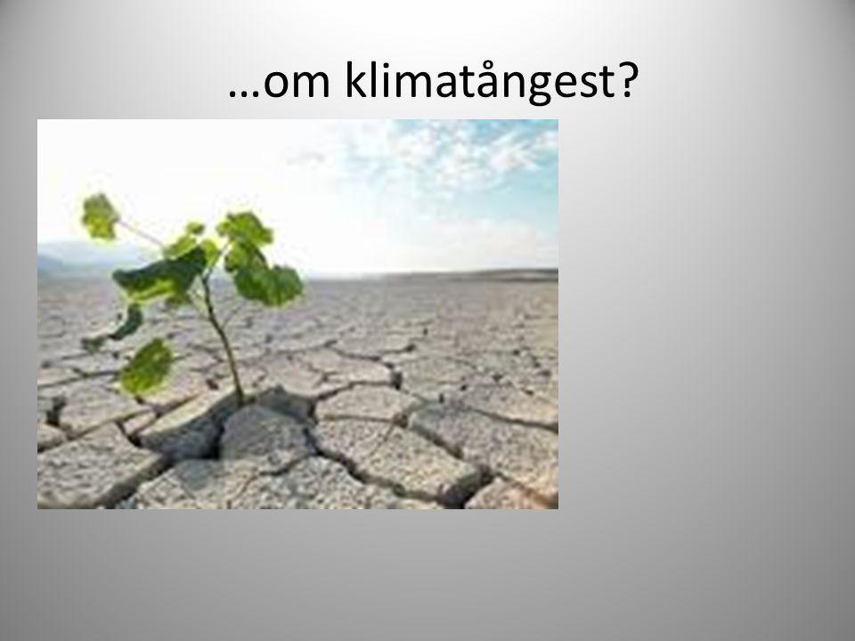…om klimatångest?