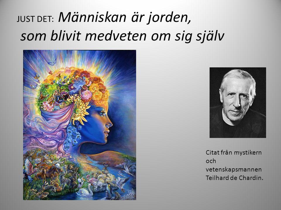 JUST DET: Människan är jorden, som blivit medveten om sig själv Citat från mystikern och vetenskapsmannen Teilhard de Chardin.