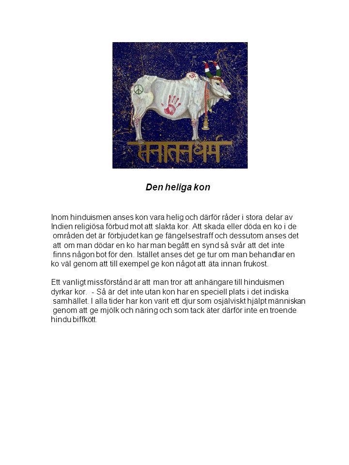 Den heliga kon Inom hinduismen anses kon vara helig och därför råder i stora delar av Indien religiösa förbud mot att slakta kor. Att skada eller döda