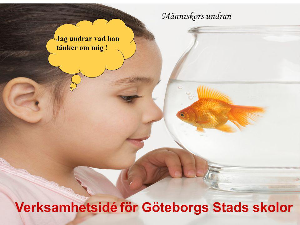 Jag undrar vad han tänker om mig ! Människors undran Verksamhetsidé för Göteborgs Stads skolor