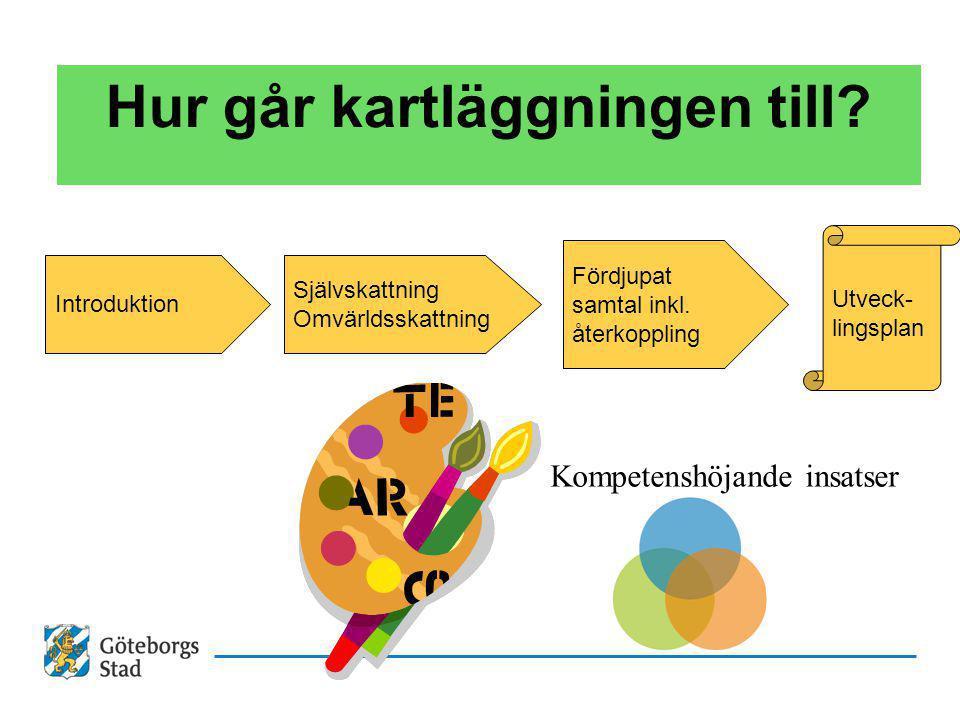 Hur går kartläggningen till? Introduktion Självskattning Omvärldsskattning Fördjupat samtal inkl. återkoppling Utveck- lingsplan Kompetenshöjande insa