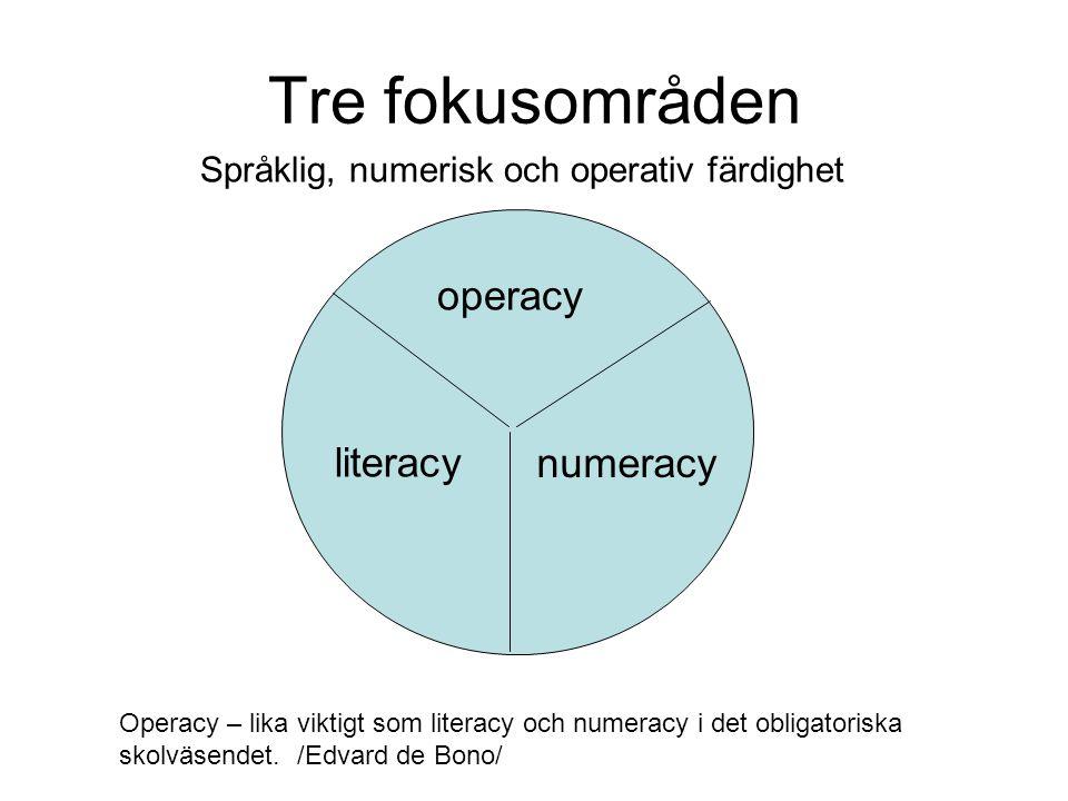 Tre fokusområden Språklig, numerisk och operativ färdighet operacy literacy numeracy Operacy – lika viktigt som literacy och numeracy i det obligatoriska skolväsendet.