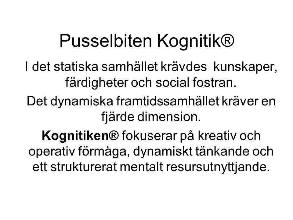 Pusselbiten Kognitik® I det statiska samhället krävdes kunskaper, färdigheter och social fostran.