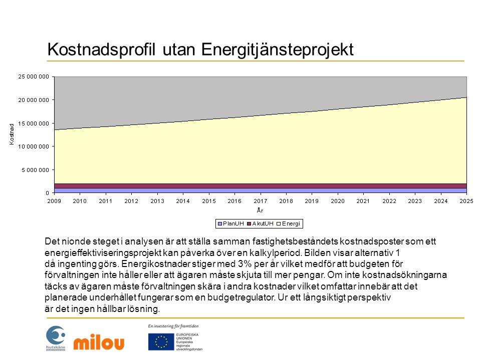 Kostnadsprofil med litet Energitjänsteprojekt Det tionde steget i analysen är att ställa samman fastighetsbeståndets kostnadsposter för alternativ 2 då ca 1/3 av fastighetsbeståndet genomförs.