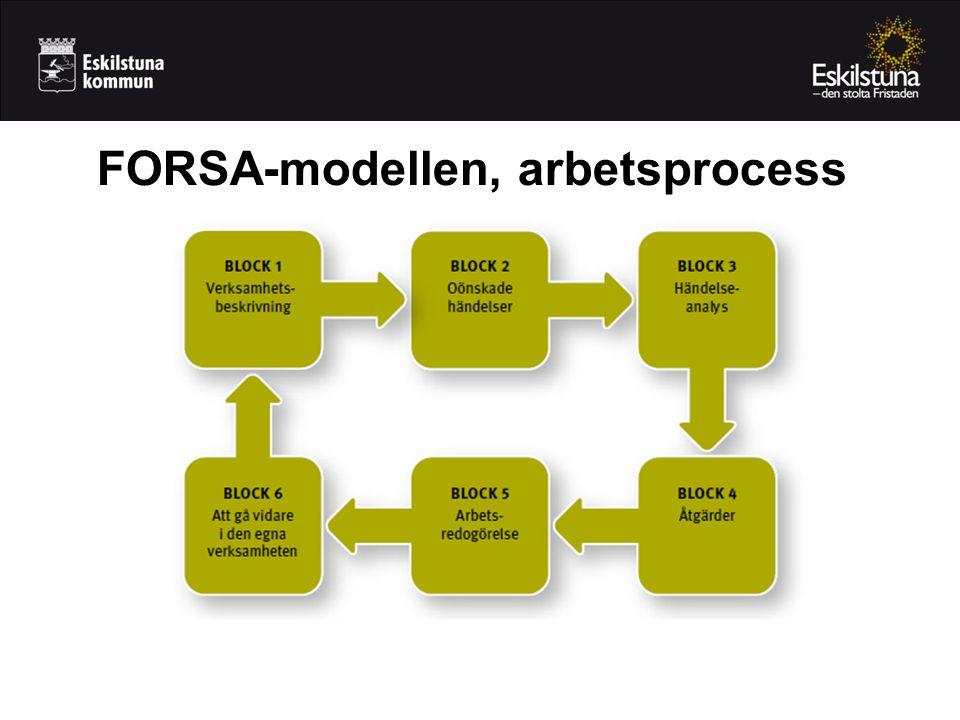 FORSA-modellen, arbetsprocess