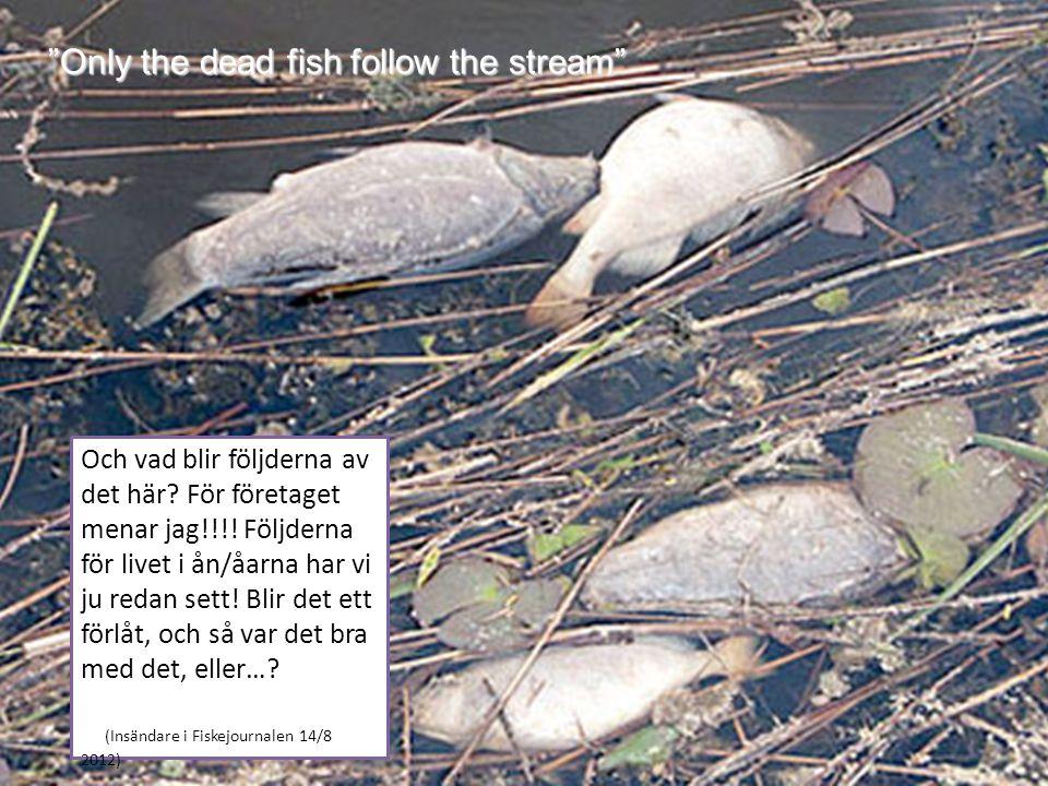 Only the dead fish follow the stream Och vad blir följderna av det här.