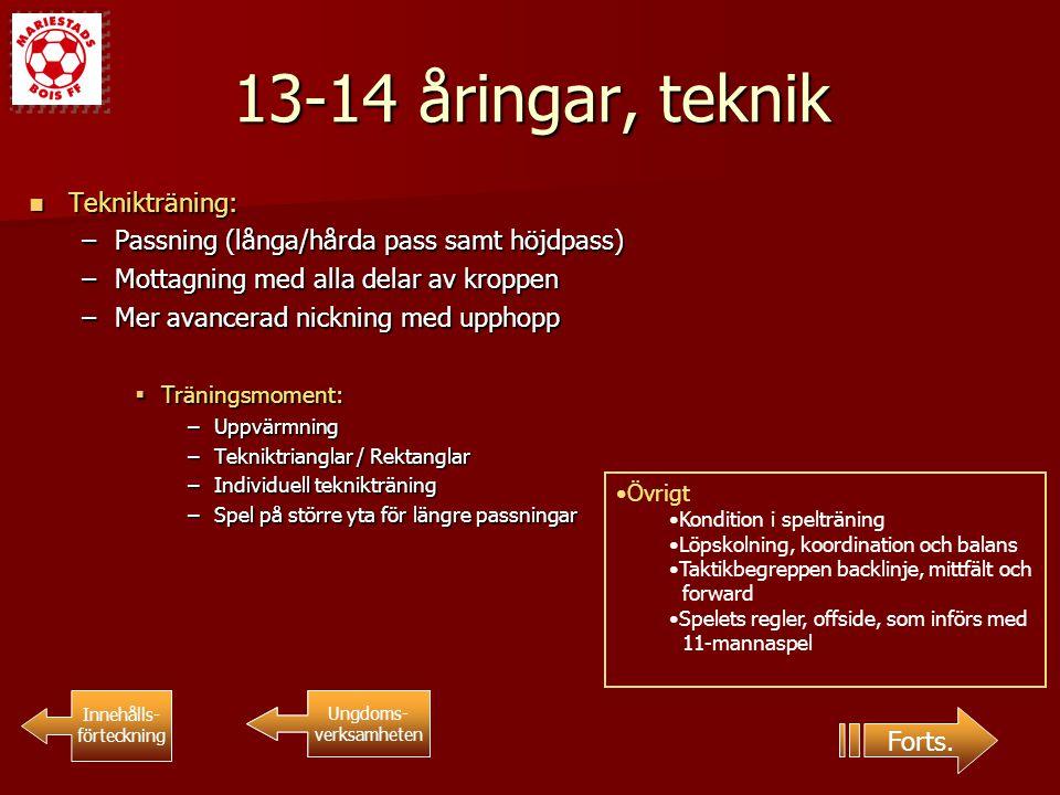 13-14 åringar, teknik Teknikträning: Teknikträning: –Passning (långa/hårda pass samt höjdpass) –Mottagning med alla delar av kroppen –Mer avancerad ni