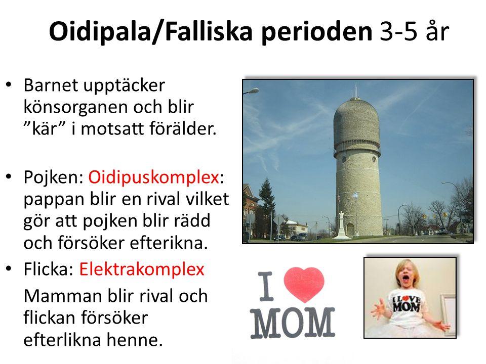 """Oidipala/Falliska perioden 3-5 år Barnet upptäcker könsorganen och blir """"kär"""" i motsatt förälder. Pojken: Oidipuskomplex: pappan blir en rival vilket"""