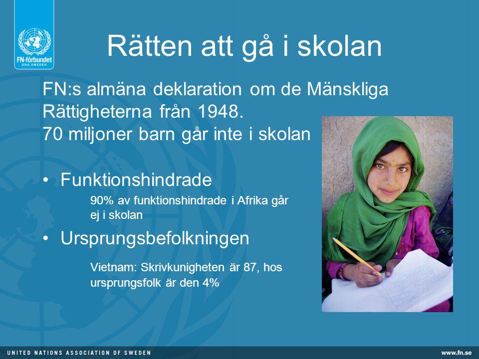 Skolmat blir kunskap - en kampanj från Svenska FN-förbundet