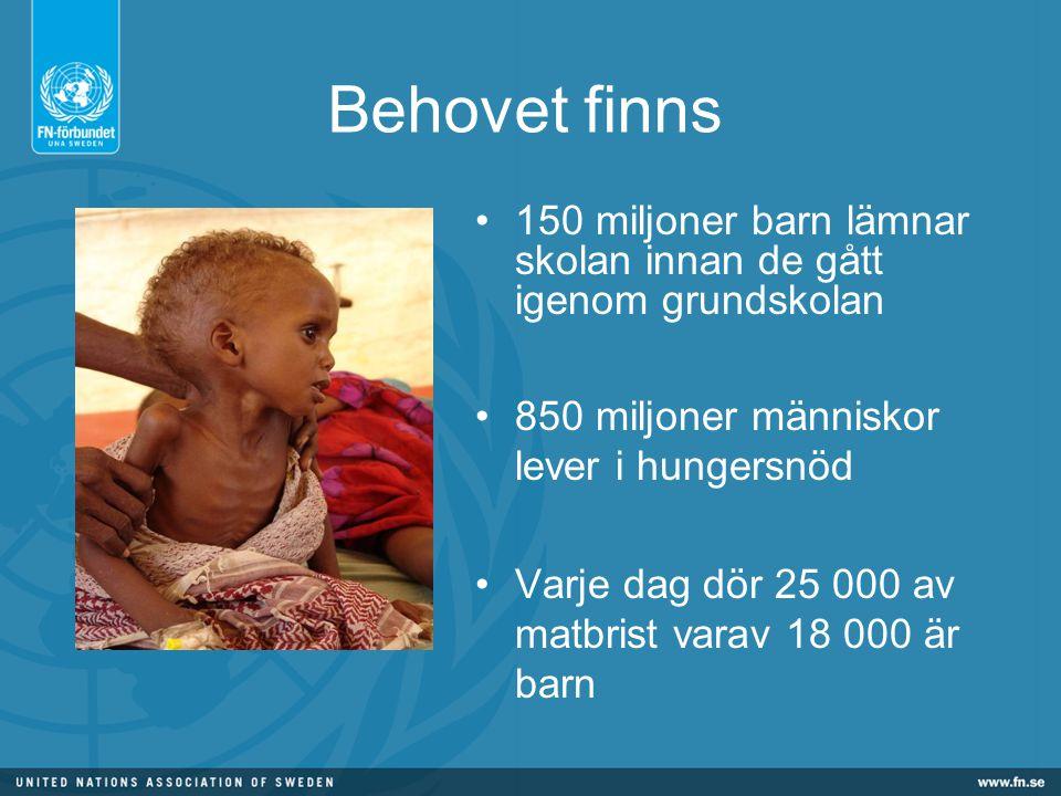 Behovet finns 150 miljoner barn lämnar skolan innan de gått igenom grundskolan 850 miljoner människor lever i hungersnöd Varje dag dör 25 000 av matbrist varav 18 000 är barn