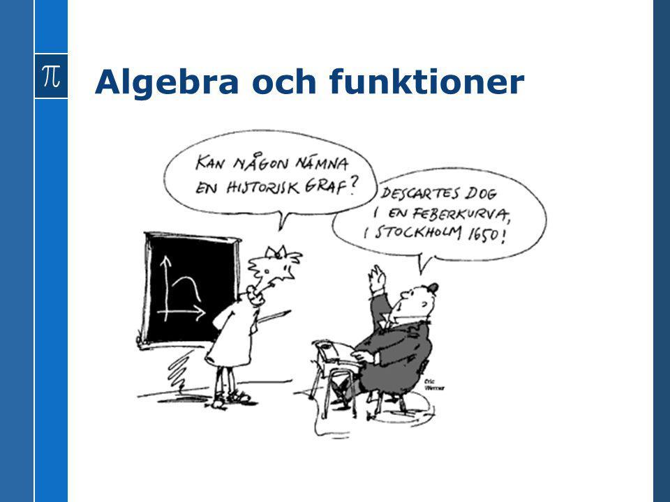 Algebra och funktioner