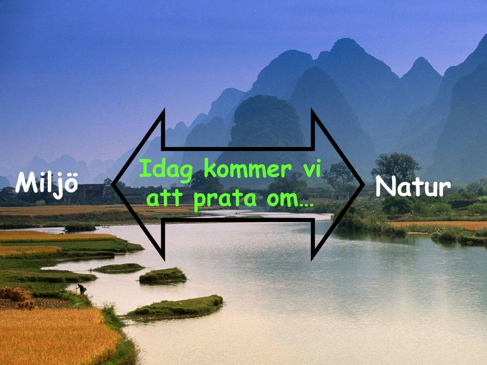Hållbar utveckling Miljö Framtid Kultur Natur För att allt ska fungera krävs det att dessa element fungerar ihop.