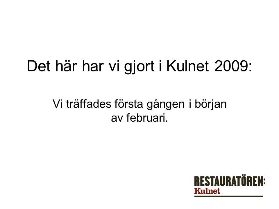 Det här har vi gjort i Kulnet 2009: Vi träffades första gången i början av februari.