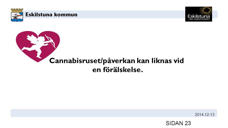 2014-12-13 SIDAN 23 Cannabisruset/påverkan kan liknas vid en förälskelse.