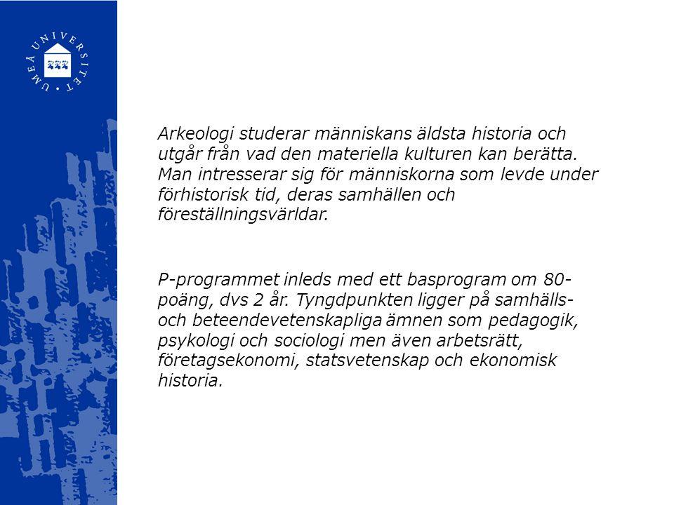Arkeologi studerar människans äldsta historia och utgår från vad den materiella kulturen kan berätta.