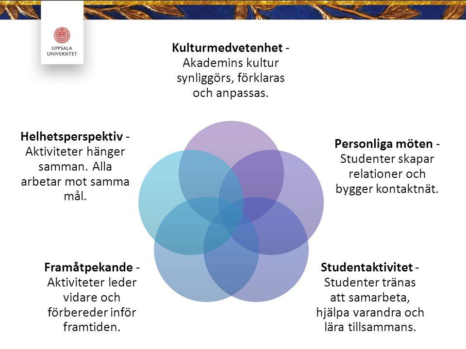 Kulturmedvetenhet - Akademins kultur synliggörs, förklaras och anpassas.