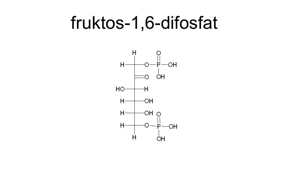 fruktos-1,6-difosfat
