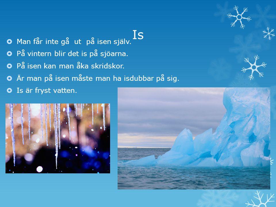 Is  Man får inte gå ut på isen själv. På vintern blir det is på sjöarna.