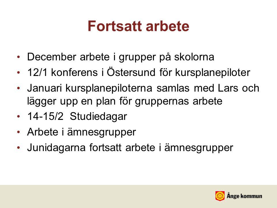 Fortsatt arbete December arbete i grupper på skolorna 12/1 konferens i Östersund för kursplanepiloter Januari kursplanepiloterna samlas med Lars och l