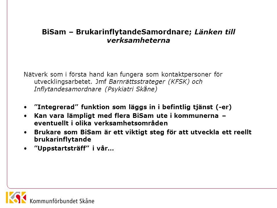 BiSam – BrukarinflytandeSamordnare; Länken till verksamheterna Nätverk som i första hand kan fungera som kontaktpersoner för utvecklingsarbetet. Jmf B
