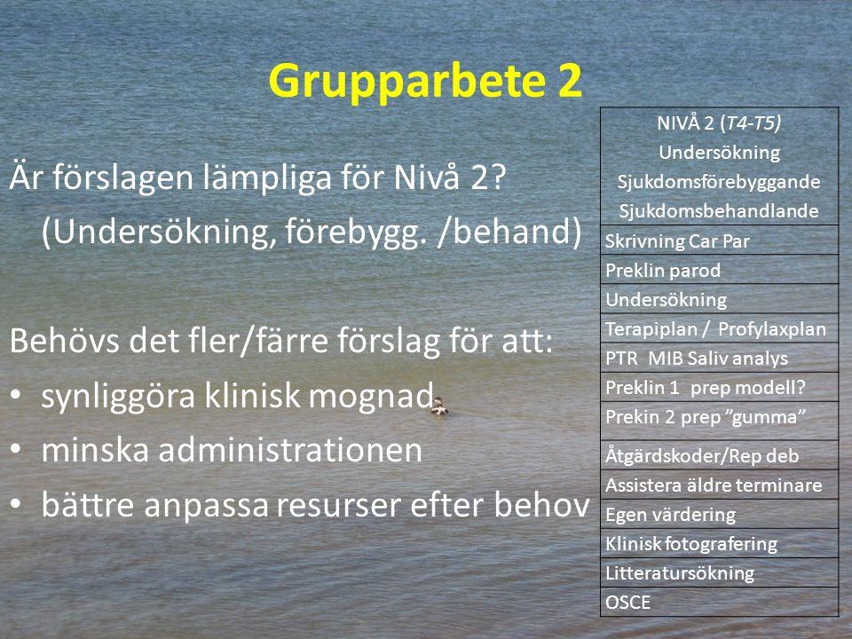 Grupparbete 2 Är förslagen lämpliga för Nivå 2? (Undersökning, förebygg. /behand) Behövs det fler/färre förslag för att: synliggöra klinisk mognad min