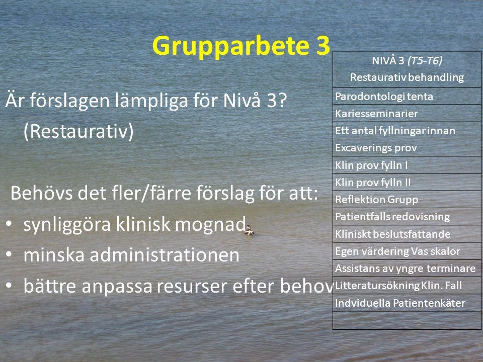 Grupparbete 3 Är förslagen lämpliga för Nivå 3? (Restaurativ) Behövs det fler/färre förslag för att: synliggöra klinisk mognad minska administrationen