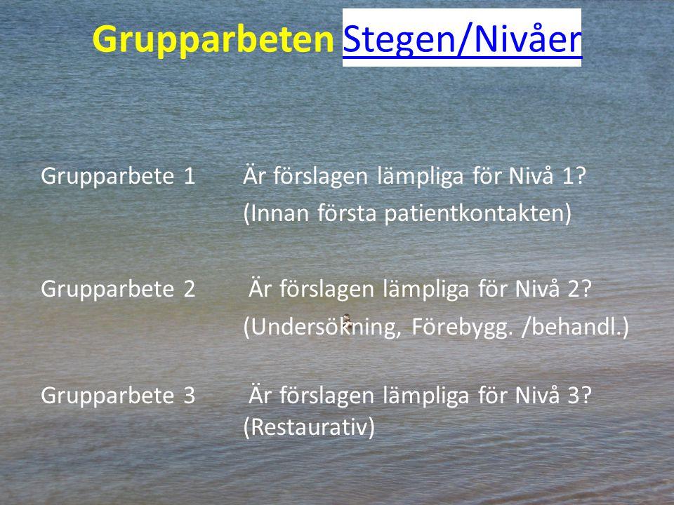 Grupparbeten Stegen/NivåerStegen/Nivåer Grupparbete 1Är förslagen lämpliga för Nivå 1? (Innan första patientkontakten) Grupparbete 2 Är förslagen lämp