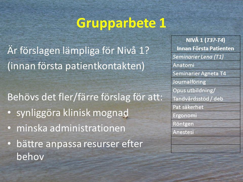Grupparbete 1 Är förslagen lämpliga för Nivå 1? (innan första patientkontakten) Behövs det fler/färre förslag för att: synliggöra klinisk mognad minsk