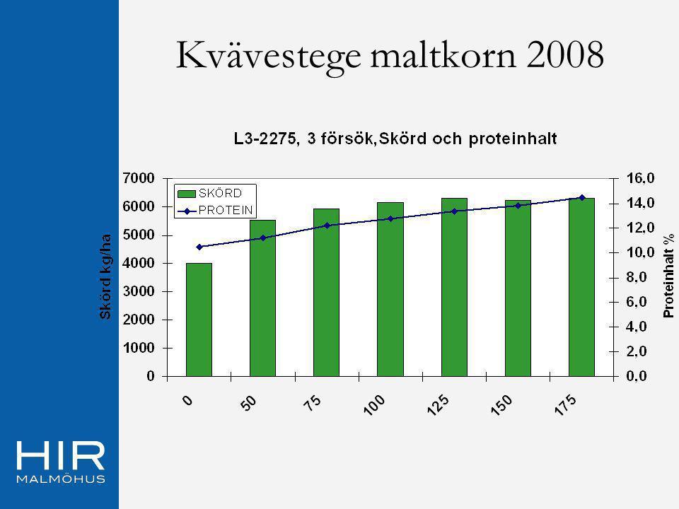Ekonomiskt utfall 2008