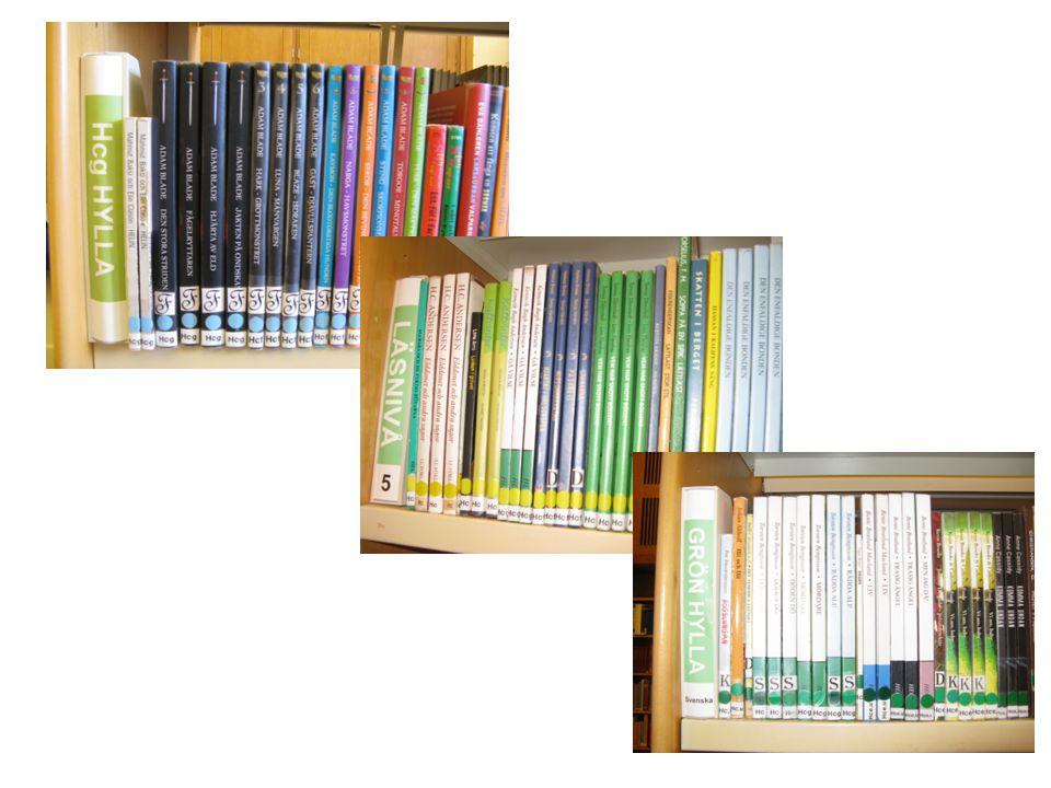 Böcker för många elever på gymnasiesärskolan