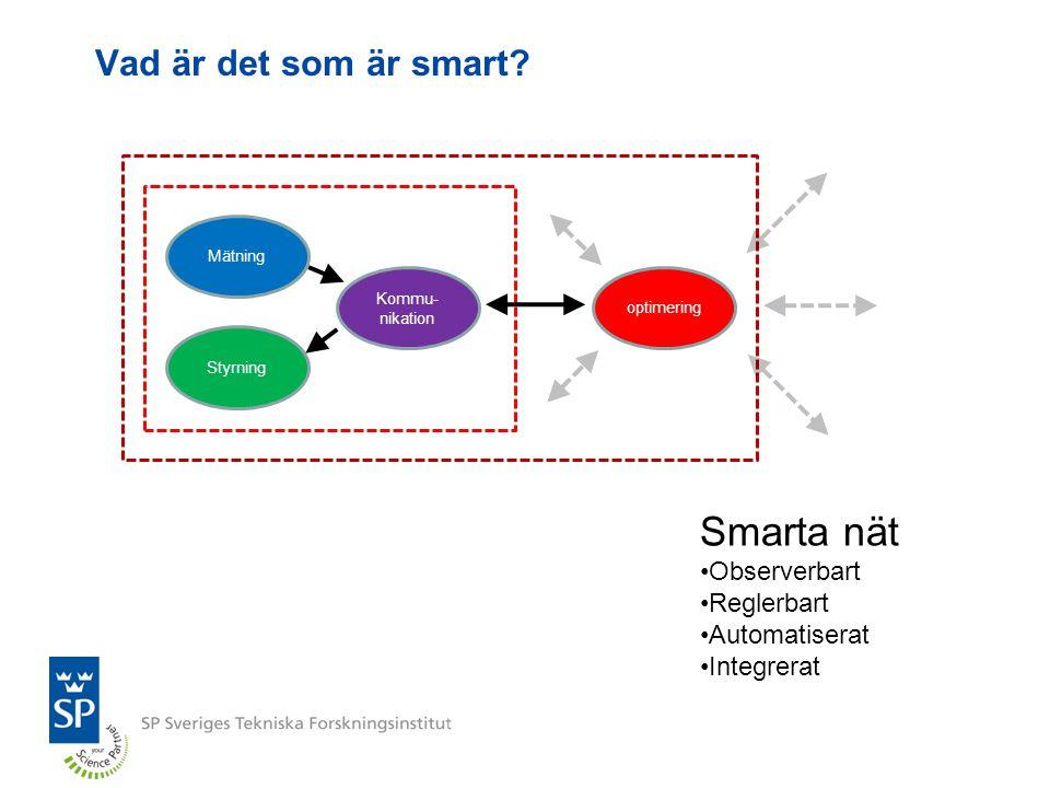 Hinder på vägen till smarta nät Myndighetsreglering Affärsmöjligheter Tillgång till kapital Teknikmognad och leveransrisker Kunskap och erfarenhet Datasäkerhet och dataintegritet