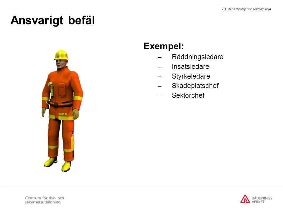 2.1 Benämningar vid rökdykning 4 Ansvarigt befäl Exempel: –Räddningsledare –Insatsledare –Styrkeledare –Skadeplatschef –Sektorchef
