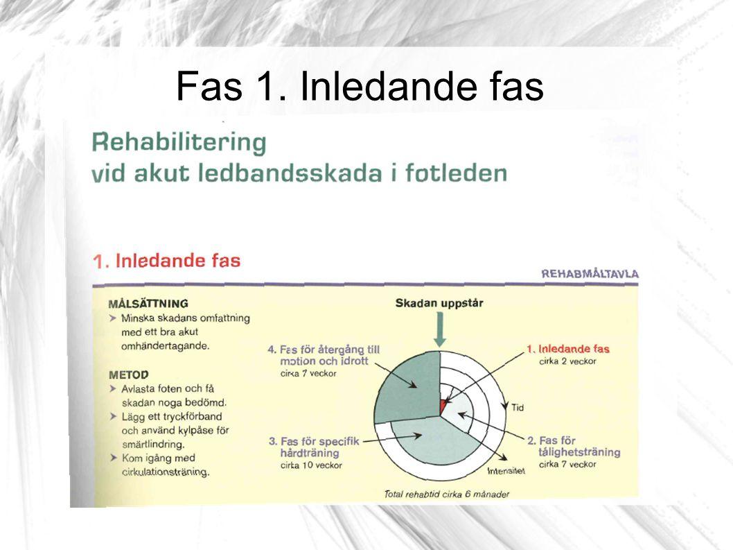 Inledande fas: Cirkulation & rörlighet Tips.