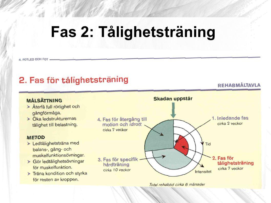 Tålighetsövning: Balansövningar Tips.3-5 ggr/dag.