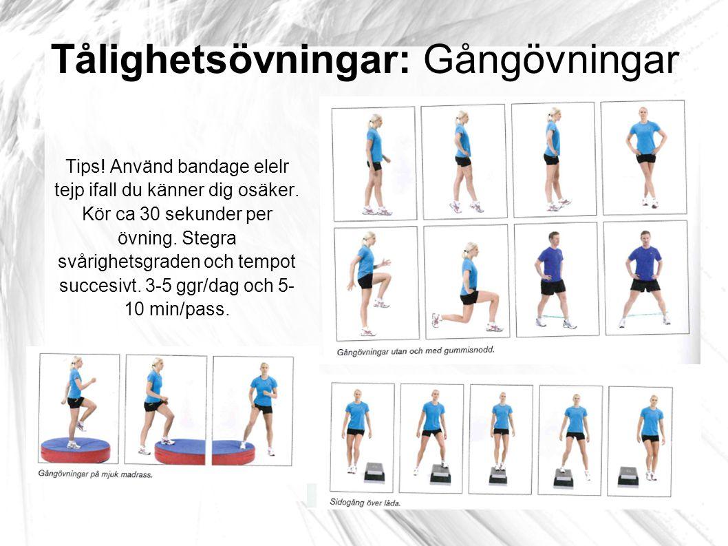 Tålighetsövningar: Styrketräning Tips.15-30 ggr i 2-4 omgångar.