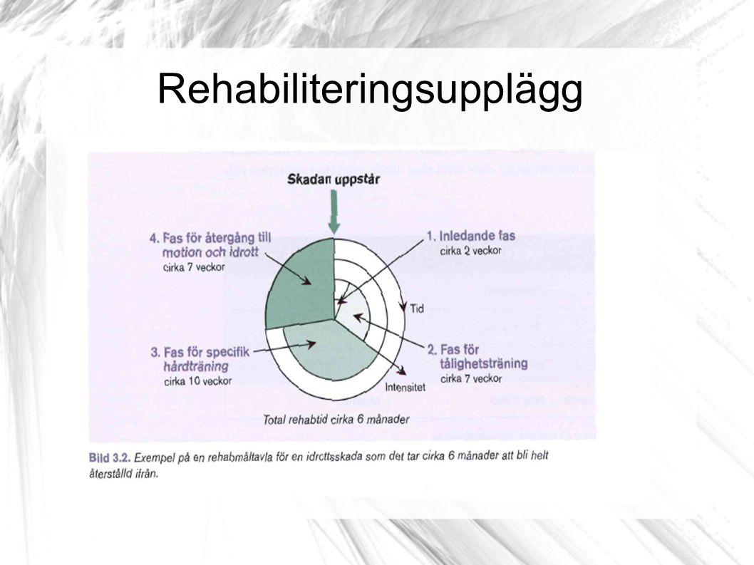 Rehabiliteringsupplägg