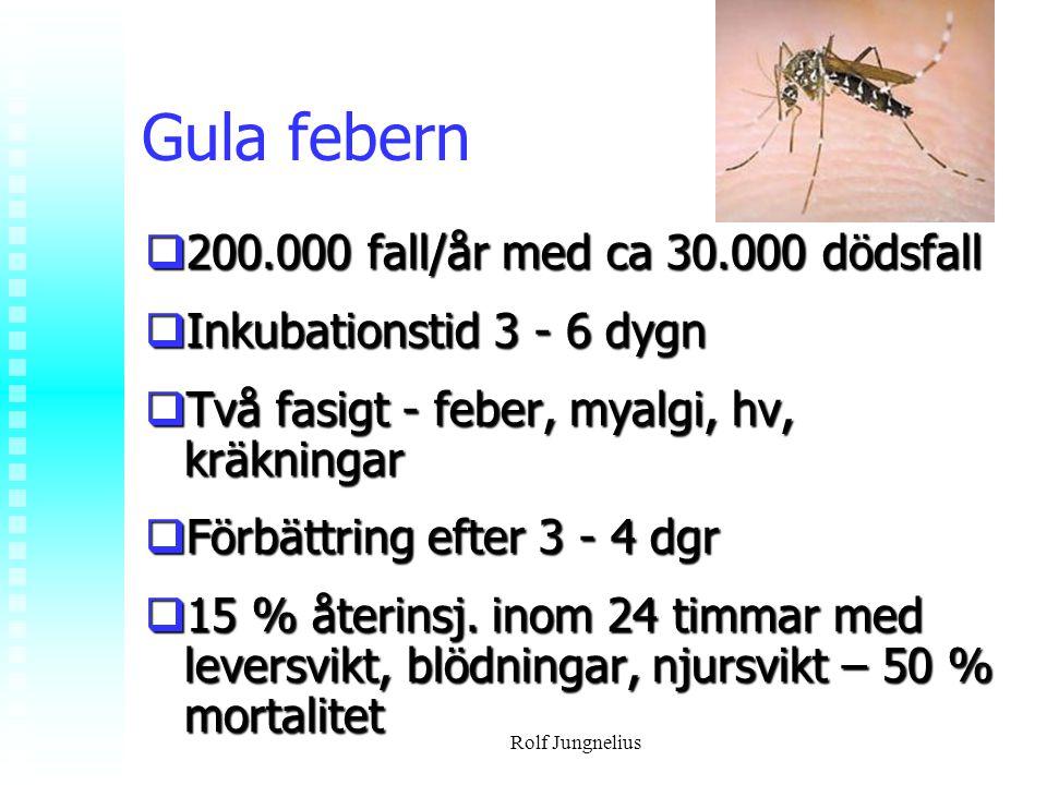 Rolf Jungnelius Gula febern  200.000 fall/år med ca 30.000 dödsfall  Inkubationstid 3 - 6 dygn  Två fasigt - feber, myalgi, hv, kräkningar  Förbät