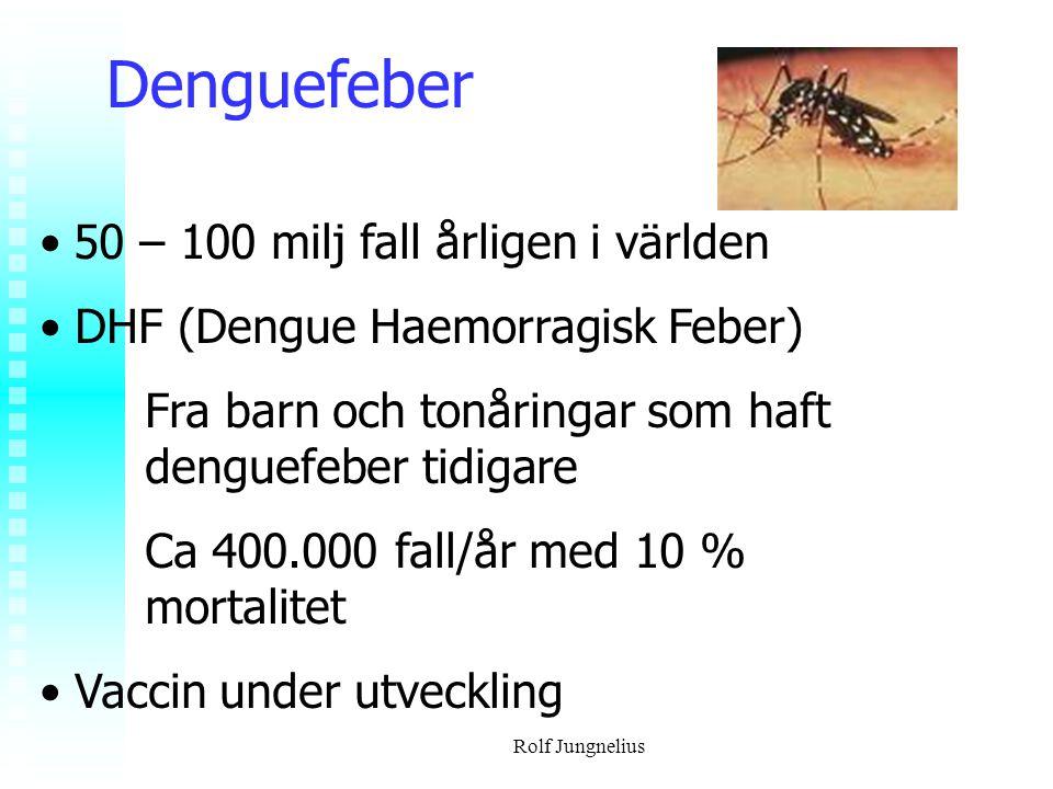 Rolf Jungnelius Denguefeber 50 – 100 milj fall årligen i världen DHF (Dengue Haemorragisk Feber) Fra barn och tonåringar som haft denguefeber tidigare