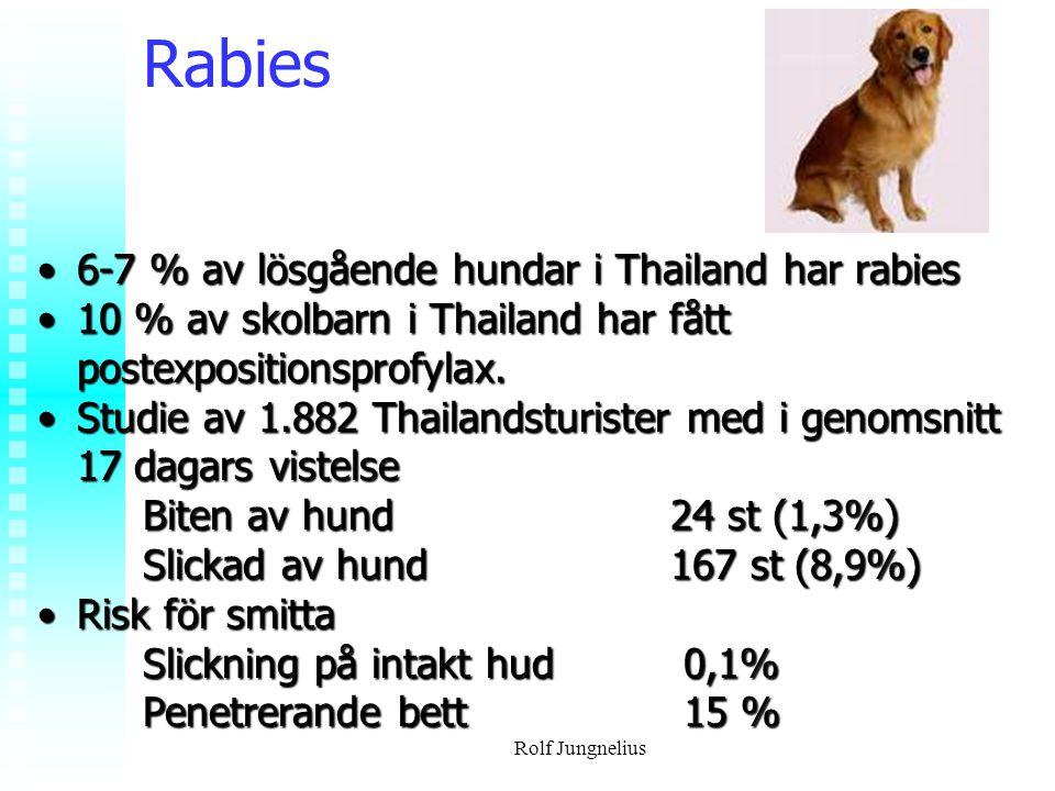 Rolf Jungnelius Rabies 6-7 % av lösgående hundar i Thailand har rabies6-7 % av lösgående hundar i Thailand har rabies 10 % av skolbarn i Thailand har