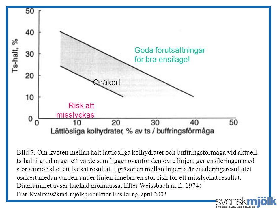 Bild 7. Om kvoten mellan halt lättlösliga kolhydrater och buffringsförmåga vid aktuell ts-halt i grödan ger ett värde som ligger ovanför den övre linj