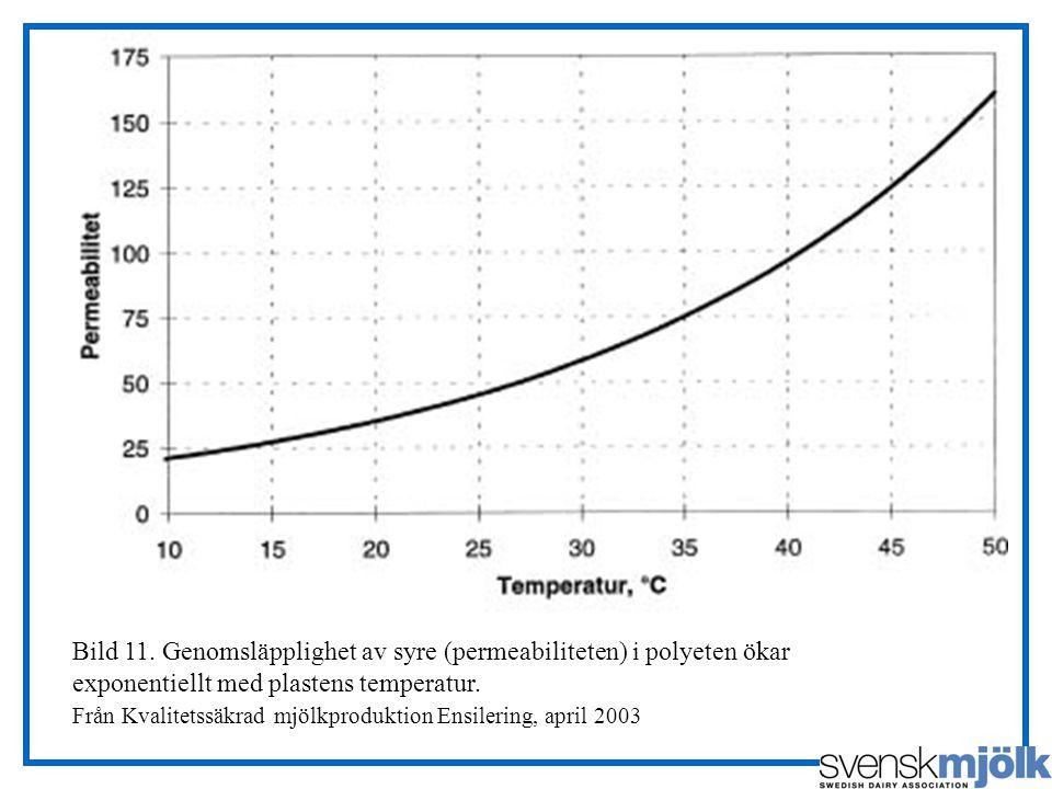 Bild 11. Genomsläpplighet av syre (permeabiliteten) i polyeten ökar exponentiellt med plastens temperatur. Från Kvalitetssäkrad mjölkproduktion Ensile
