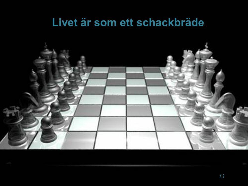 X Jag ska bevisa att jag duger ➻ ➻ Är jag med och krigar i tankarna mellan till exempel, jag är dum (svart schackpjäs) och ska bevisa att jag är smart (vit pjäs) genom prestationer.