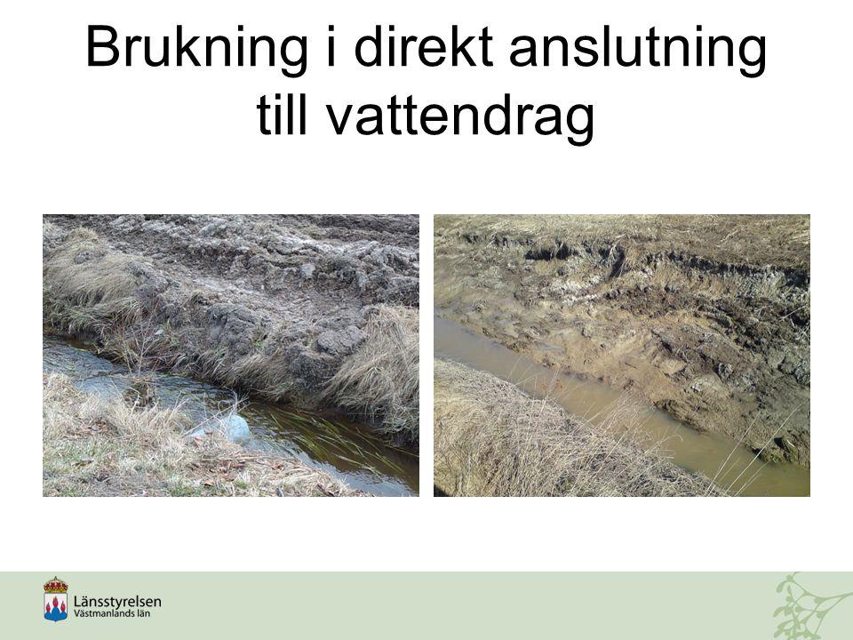 Brukning i direkt anslutning till vattendrag