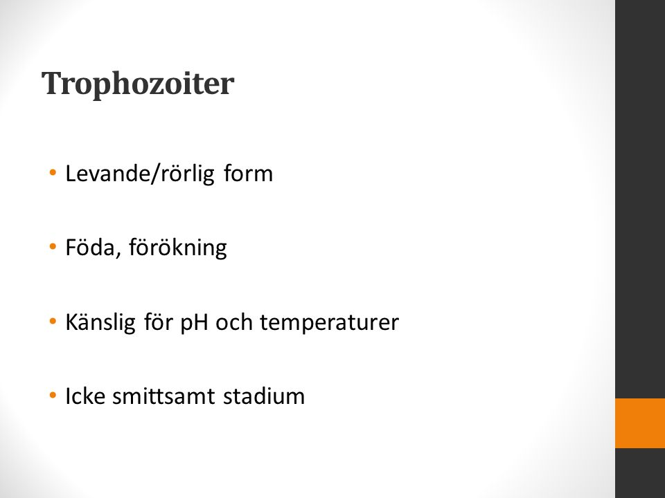 Trophozoiter Levande/rörlig form Föda, förökning Känslig för pH och temperaturer Icke smittsamt stadium