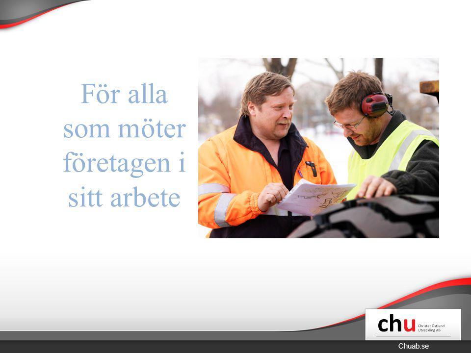 Chuab.se Vikten av ett bra företagsklimat Hur går det i Skellefteå? B. Varför är det viktigt?