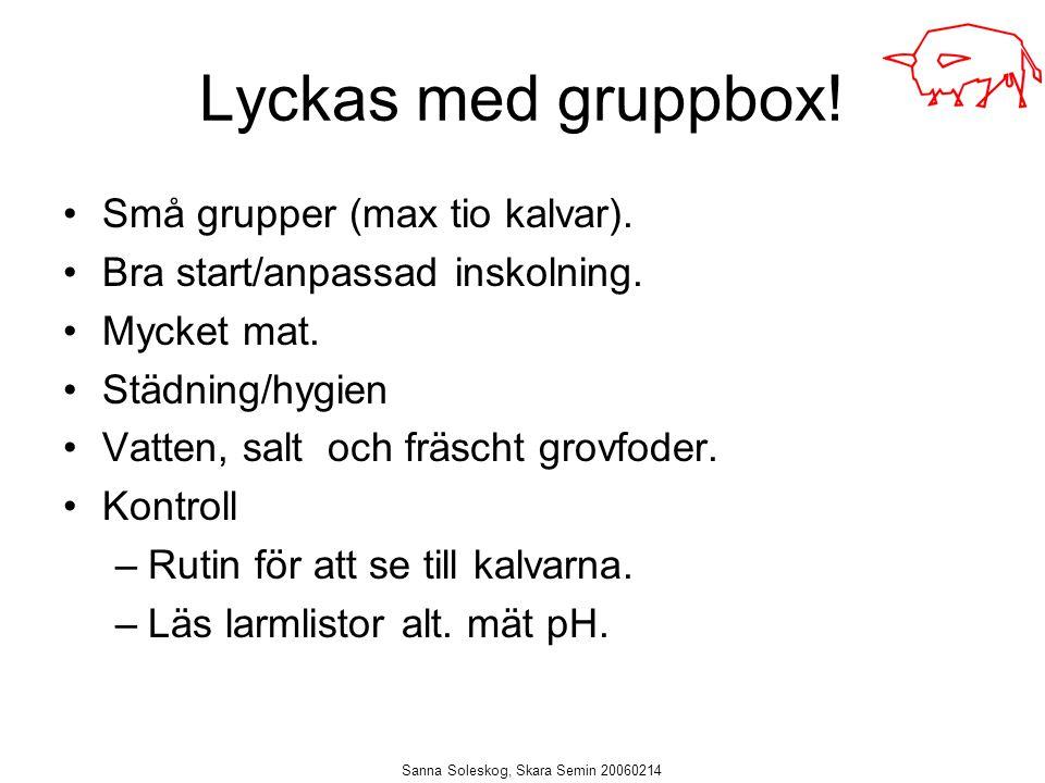 Sanna Soleskog, Skara Semin 20060214 Lyckas med gruppbox! Små grupper (max tio kalvar). Bra start/anpassad inskolning. Mycket mat. Städning/hygien Vat