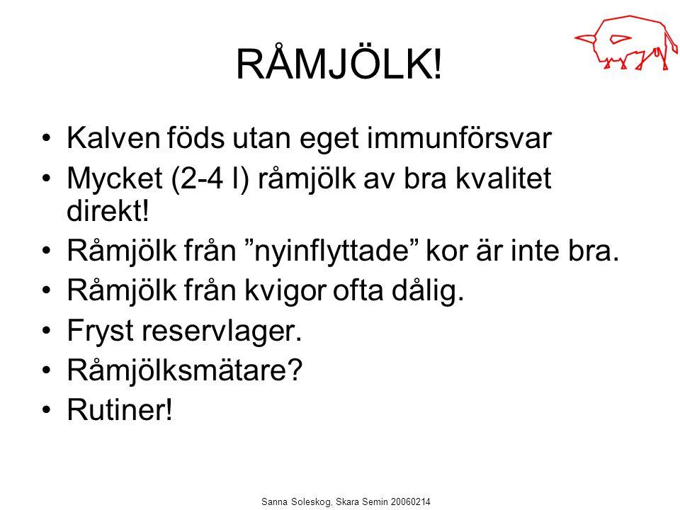"""Sanna Soleskog, Skara Semin 20060214 RÅMJÖLK! Kalven föds utan eget immunförsvar Mycket (2-4 l) råmjölk av bra kvalitet direkt! Råmjölk från """"nyinflyt"""